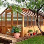 Популярные варианты строительства теплицы на даче